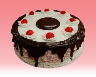 Chocolate Icecream Cake